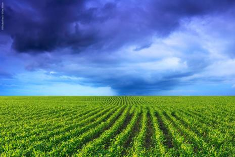 Semana deve ser marcada por chuvas em diversas áreas agrícolas do país
