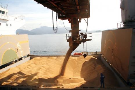 Exportações de soja foram menores no RS