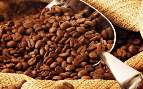 Chineses estão de olho no mercado de cafés especiais do Brasil