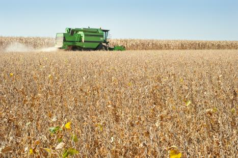 Investimento em alta tecnologia e bom espaço para plantio favorecem produção agrícola em regiões do país