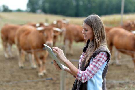 Agropecuária se prepara para entrar em nova fase de uma tendência tecnológica