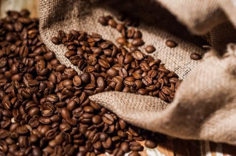 Dirigente destaca qualidade e quantidade do café que serão produzidos no Brasil neste ano