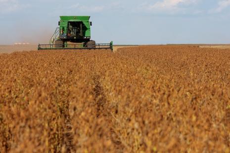 Paraná encaminha para finalizar colheita de soja