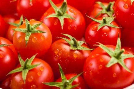 O tomate é conhecido como uma das culturas que mais se aplica agrotóxicos