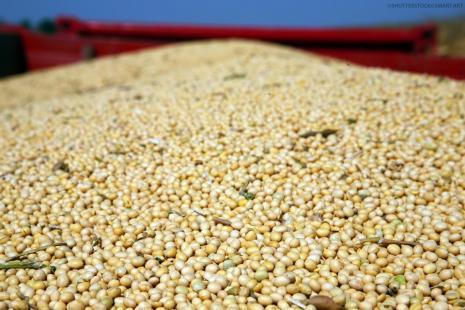 Produção brasileira de grãos deve ser menor em 2018