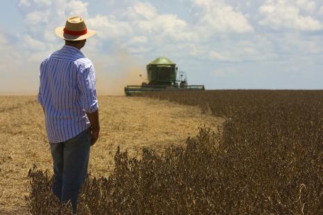 Produtor paranaense obteve 149 sacas por hectare