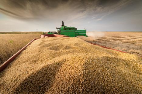 Mesmo com estiagem, safra de grãos deve ultrapassar 30 milhões de tons no RS