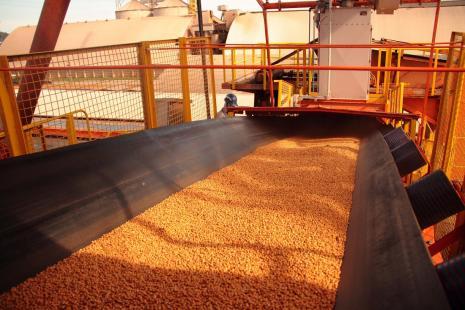 Exportação de soja recua em fevereiro