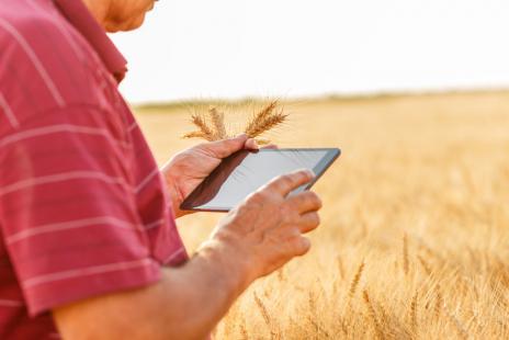 Adoção de tecnologias pode melhorar condições dos processos de produção agropecuária