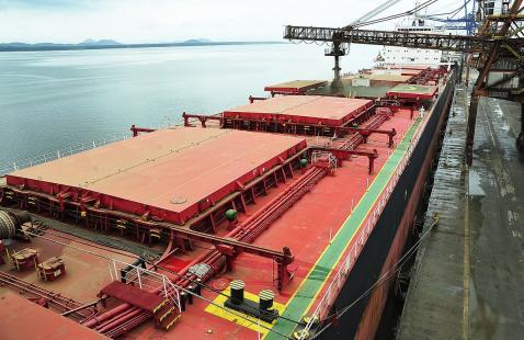 Brasil aumentou sua participação no comércio agrícola mundial (Foto: Ivan Bueno)