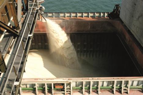 Exportações de açúcar na União Europeia devem totalizar 3,52 milhões de tons