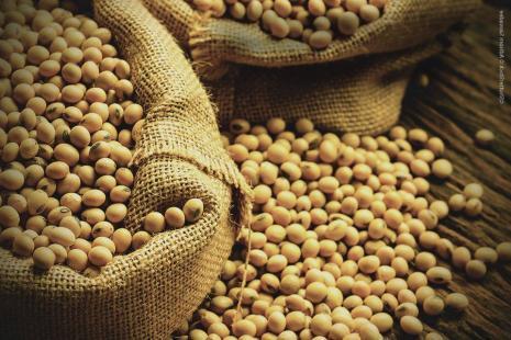 Preço da saca de soja chegou a R$ 71,91 em março
