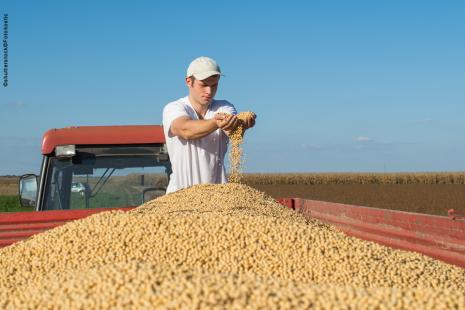 Comercialização da soja chegou a 54% do esperado para a safra 2017/18