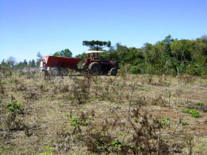 Falta de incentivos ao um programa de correção do solo vem afetando a renda do produtor rural (Foto: Fepagro-RS)